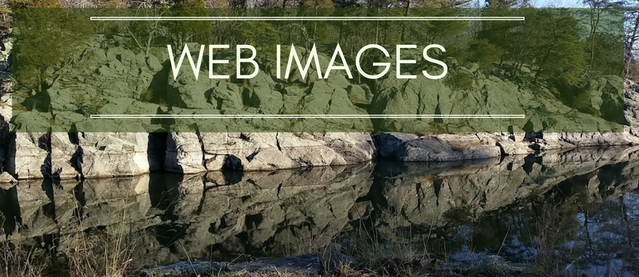 How does Image Optimization Work on Websites?